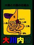 絵本「大腸と小腸の仕組み」