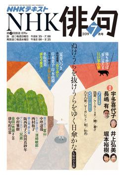 NHK 俳句 2019年7月号-電子書籍