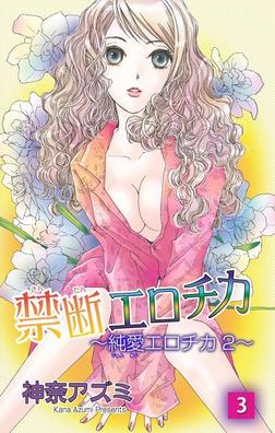 禁断エロチカ~純愛エロチカ2~3-電子書籍