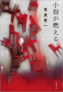 小指が燃える-電子書籍