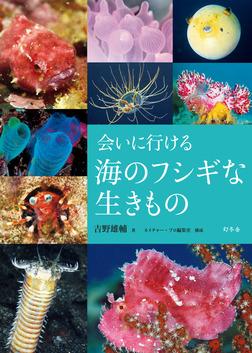 会いに行ける海のフシギな生きもの-電子書籍