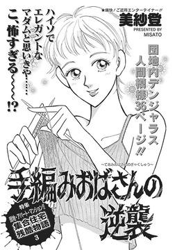 壮絶!!女同士の足のひっぱりあい~手編みおばさんの逆襲~-電子書籍