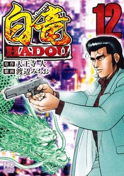 白竜HADOU 12-電子書籍