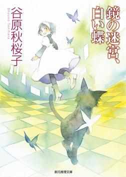 鏡の迷宮、白い蝶 美波の事件簿5-電子書籍
