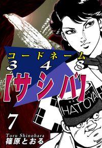 コードネーム348【サシバ】(7)