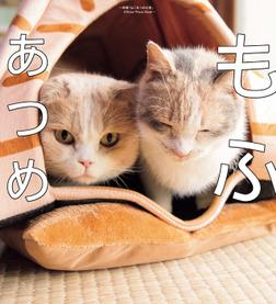 もふあつめ ~映画「ねこあつめの家」Official Photo Book~-電子書籍