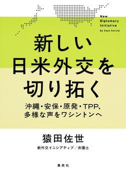 新しい日米外交を切り拓く ――沖縄・安保・原発・TPP、多様な声をワシントンへ-電子書籍