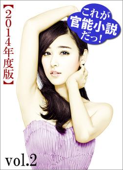 これが官能小説だっ!2014年度版vol.2-電子書籍