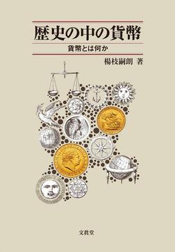 歴史の中の貨幣 : 貨幣とは何か-電子書籍