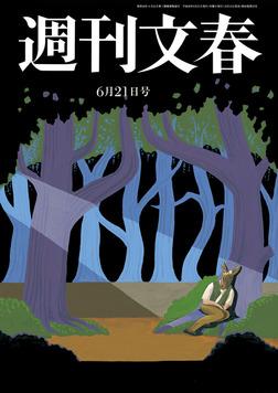週刊文春 6月21日号-電子書籍