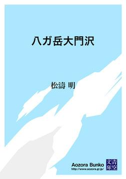 八ガ岳大門沢-電子書籍