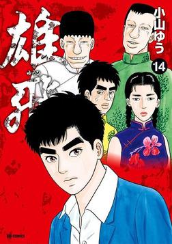 雄飛(14)-電子書籍