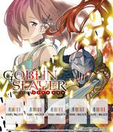 Goblin Slayer Side Story: Year One, Vol. 1 (Light Novel): Bookshelf Skin
