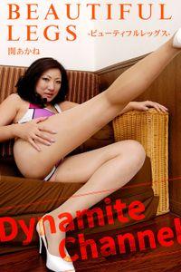 BEAUTIFUL LEGS / 関あかね