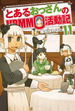 とあるおっさんのVRMMO活動記11-電子書籍