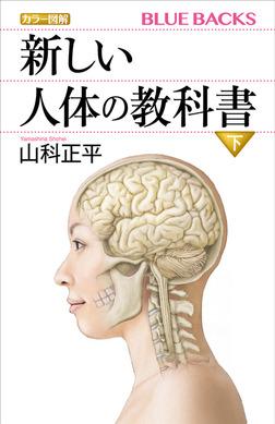 カラー図解 新しい人体の教科書 下-電子書籍