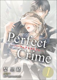 Perfect Crime 1