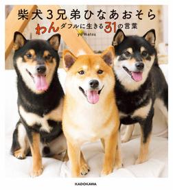 柴犬3兄弟 ひなあおそら わんダフルに生きる31の言葉-電子書籍