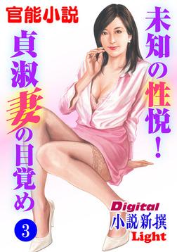 【官能小説】未知の性悦!貞淑妻の目覚め03-電子書籍