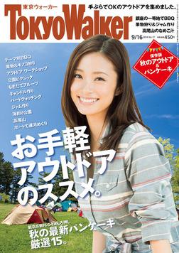 TokyoWalker東京ウォーカー 2014 No.17-電子書籍