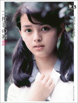 月刊平凡 GOLDEN BEST!! Vol.2 岡田奈々写真集 二度目の初恋 電子特別版-電子書籍