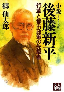 小説 後藤新平―行革と都市政策の先駆者-電子書籍