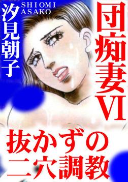 団痴妻VI 抜かずの二穴調教-電子書籍