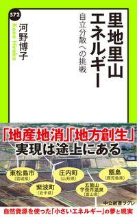 里地里山エネルギー 自立分散への挑戦(中公新書ラクレ)