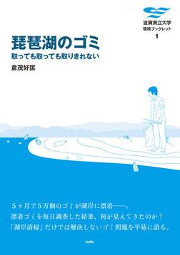 琵琶湖のゴミ 取っても取っても取りきれない-電子書籍