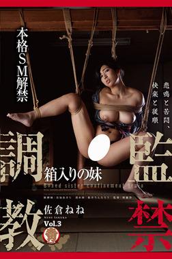 【SM】監禁調教 Vol.3 / 佐倉ねね-電子書籍