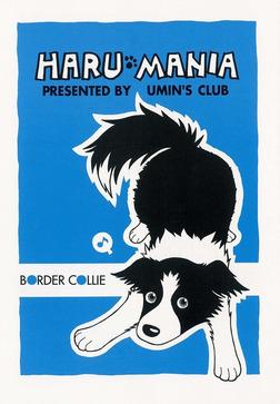 HARU MANIA 青-電子書籍