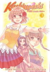 Kashimashi ~Girl Meets Girl~ Vol. 3