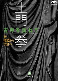 土門拳 古寺を訪ねて 京・洛北から宇治へ(小学館文庫)