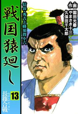 戦国猿廻し 信長・秀吉と蜂須賀小六 13-電子書籍