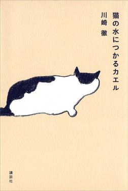 猫の水につかるカエル-電子書籍