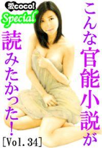 こんな官能小説が読みたかった!vol.34