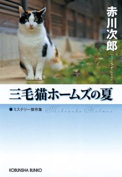 三毛猫ホームズの夏-電子書籍