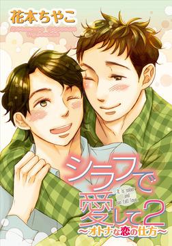 シラフで愛して2~オトナな恋の仕方~-電子書籍