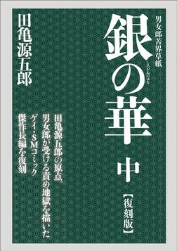 銀の華 中 【復刻版】-電子書籍