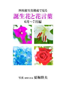 四枚組写真構成で見る誕生花と花言葉6~7月編-電子書籍