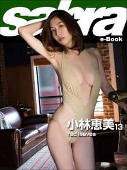 red leaves 小林恵美13 [sabra net e-Book]-電子書籍