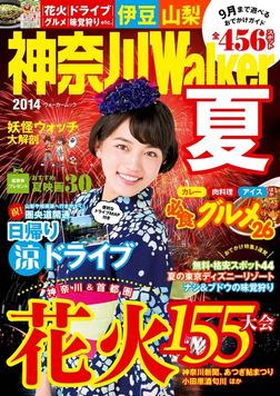 神奈川Walker2014夏-電子書籍