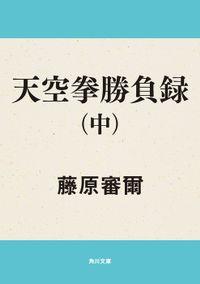 天空拳勝負録 (中)
