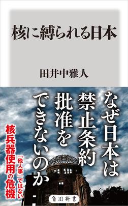 核に縛られる日本-電子書籍