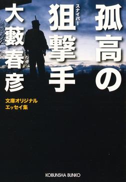 孤高の狙撃手-電子書籍