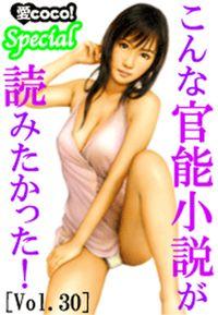 こんな官能小説が読みたかった!vol.30