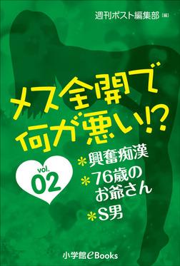 メス全開で何が悪い!? vol.2~興奮痴漢、76歳のお爺ちゃん、S男~-電子書籍
