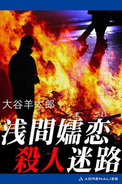 浅間嬬恋殺人迷路-電子書籍