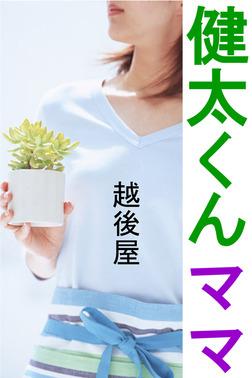 健太くんママ-電子書籍