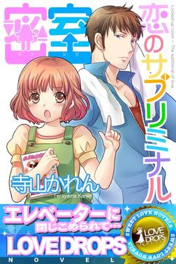密室~恋のサブリミナル-電子書籍